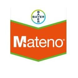 MATENO BIDON DE 5 L