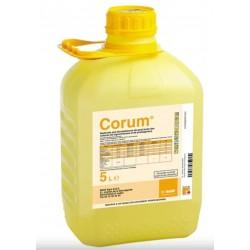 CORUM BIDON DE 5 L
