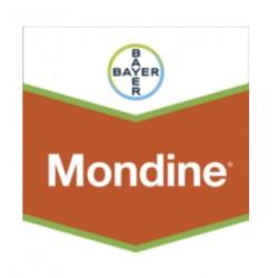 MONDINE BIDON DE 5 L