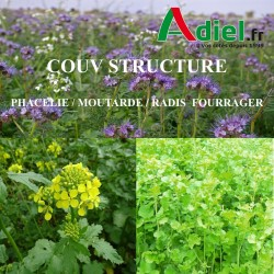 COUV STRUCTURE