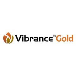 VIBRANCE GOLD 5 OU 20 L